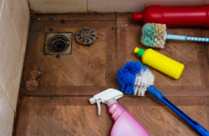 What to expect from a house cleaner?
