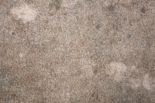 Vinegar Solution For Carpet Mold